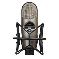 CAD Audio Equitek M179 Large Diaphragm Infinitely Adjustable Polar Pattern Condenser Microphone